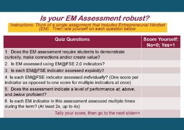 Robust Entrepreneurial Mindset Assessment